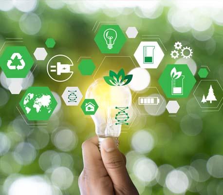 Umwelt- und Nachhaltigkeitsbeauftragter
